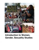 Image for the textbook titled Introduction to Women, Gender, Sexuality Studies