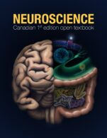 Image for the textbook titled Neuroscience - Canadian 1st Edition