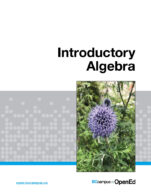 Image for the textbook titled Introductory Algebra